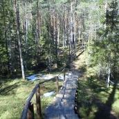 In the top of Käsmu peninsula