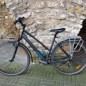 Wilier Soave trekking bike, bicycle rental Tallinn