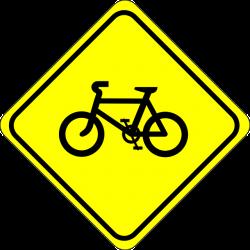 Bikepacking ja pluss-suurus rattad