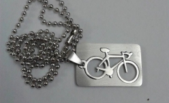 Bicycle plate and chain