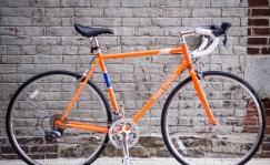 Pure Cycles maantekas 56cm oranz