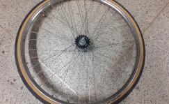 Beloved rear wheel, coaster brake