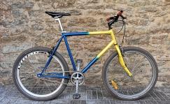 Singlespeed terasraamiga jalgratas 26